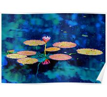 The Lily Pads Poster