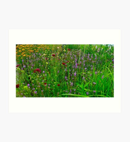 The Garden Parlour Art Print