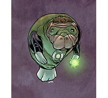 Green Lantern Manatee Photographic Print
