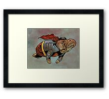 Supermanatee Framed Print
