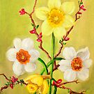 Spring Flowers 1 by Randy  Burns