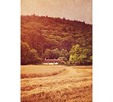 The cottage at the edge of the wood Photographic Print