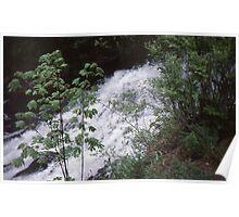 Fishhawk Falls Poster