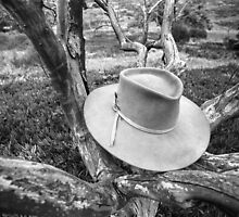 Hat in Tree San Diego 1972 Film by GJKImages