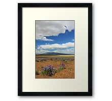 Lupines In Honey Lake Valley Framed Print