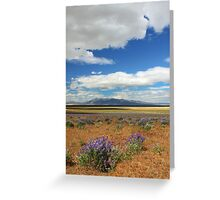 Lupines In Honey Lake Valley Greeting Card