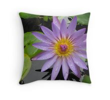Wet Water Lily Throw Pillow