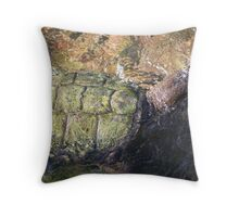 Impressionistic Snapping Turtle Throw Pillow