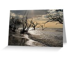 Sunrise on Botany Bay Greeting Card