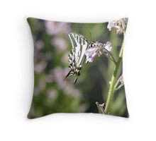 Pale Swallowtail and Bokeh Throw Pillow