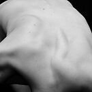 Nude Study - Back, Shape and Form by Ian Marshall