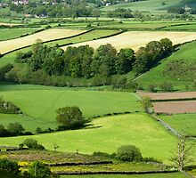 North Yorkshire Moors by acespace