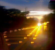 Blazing reflectors by ♥⊱ B. Randi Bailey