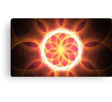 Quadrantids Canvas Print