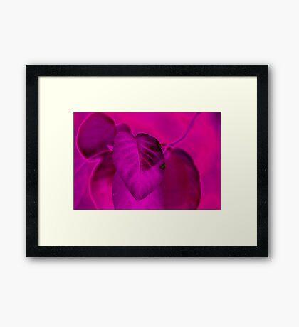 Trendy 6 Framed Print