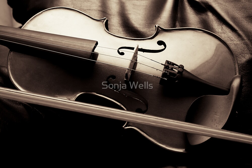 The Violin by Sonja Wells