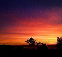 Camp Site Sunset  by designzbyjamz