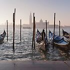 Early Morning in Venice by Mike Church