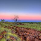 A Spinifex Dusk by Stephen  Nicholson