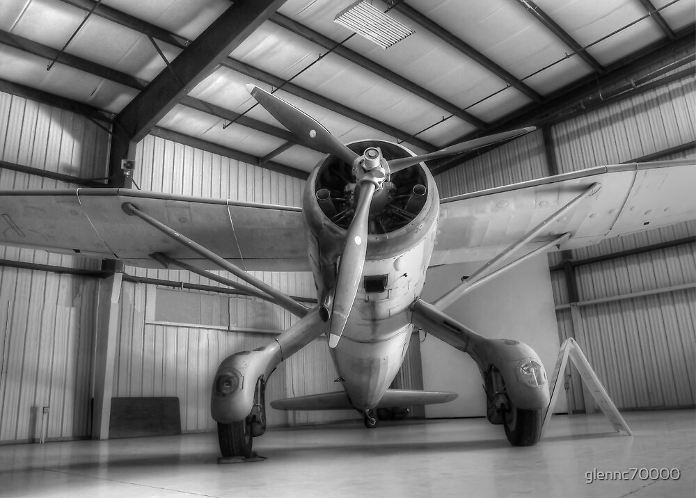 Canadian Lysander - Monotone by glennc70000