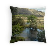Dont Pass This One By Throw Pillow