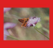 Skipper Butterfly  Baby Tee