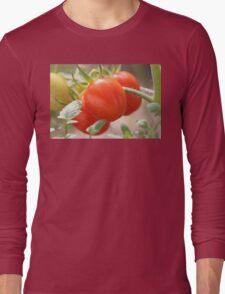 Fresh Garden Tomatoes Long Sleeve T-Shirt