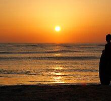 Sun Seeker by Peyton Duncan