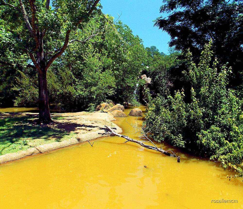 A Yellow River by rosaliemcm