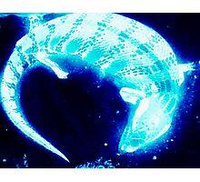 Neon blue blue tongue lizard Photographic Print