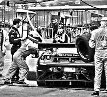 Brands Hatch GP Auto 2012 by laurac