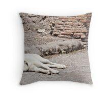Stray Dog 6 Throw Pillow