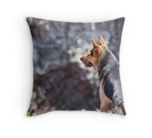 Stray Dog 9 Throw Pillow