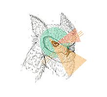 Simplistic Owl Photographic Print