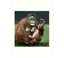 Orangutan Mother and Baby Art Print