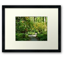 Garden in the Woods Framed Print