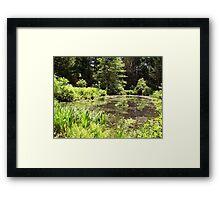 Garden in the Woods II Framed Print