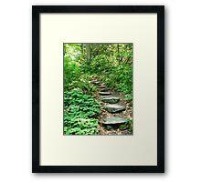 Garden in the Woods III Framed Print
