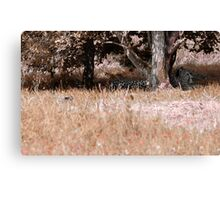 Danger in the woods Canvas Print