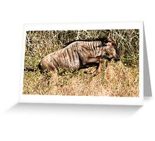 I May Not Be Pretty, But I Can Run ! Greeting Card