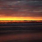 seaspray. eastcoast, tasmania  by tim buckley | bodhiimages