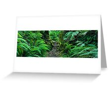 Grand Canyon Track, Blue Mountains, New South Wales, Australia Greeting Card