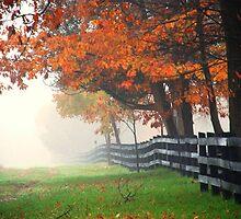misty autumn morning.. by JOSEPHMAZZUCCO