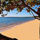 The magic of Arnhem Land - an isolated beach by georgieboy98