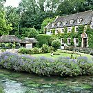 The Swan at Bibury by Karen Martin