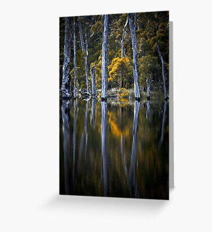 Reflected Greeting Card