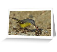 """The early Bird catches the Worm"""" MARLO.VIC. Greeting Card"""