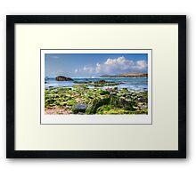 Treyarnon Bay Framed Print