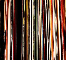 Vinyl Junkie Adventures by Deb Maidment