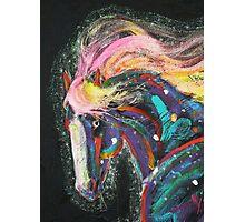 Starborn Pony up close Photographic Print